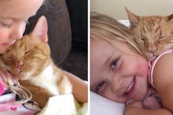 Женщина дала котёнку дом, 13 лет спустя он охраняет её дочь и помогает ей учиться читать