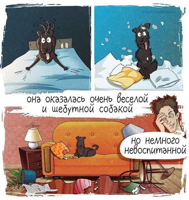 Прикольный комикс о жизни пса, попавшего в семью после приюта