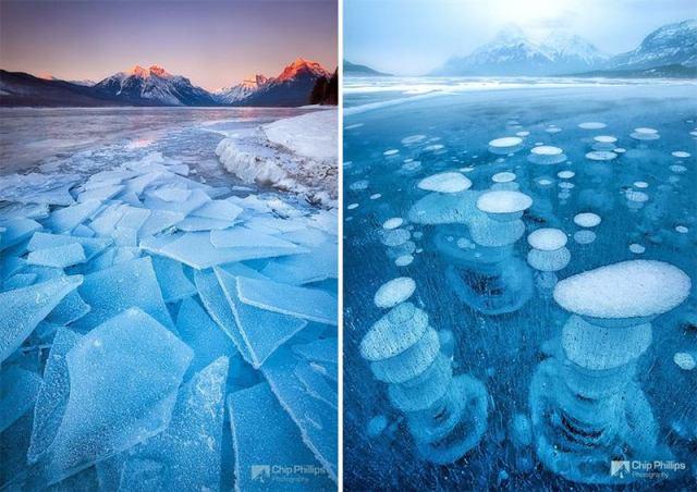 28 примеров ледяного великолепия от скульптора по имени Зима