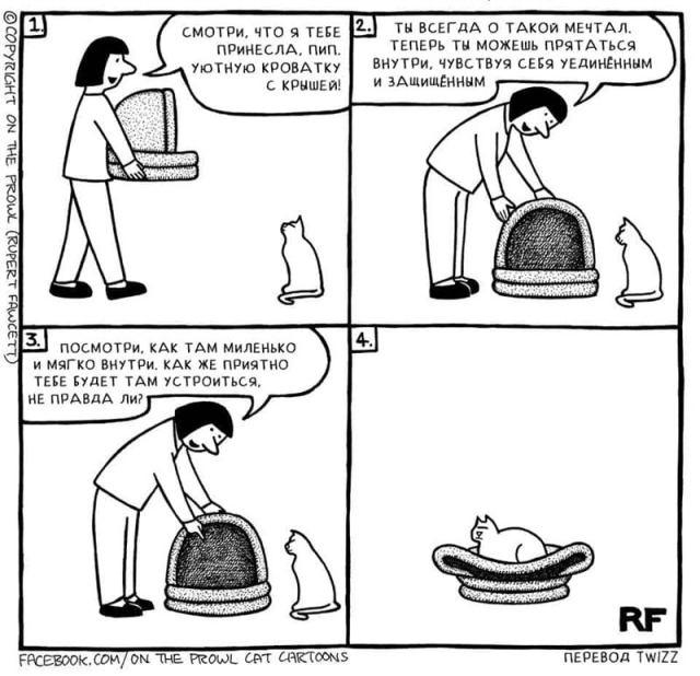 Комиксы демонстрирующие, как котики смотрят на этот мир