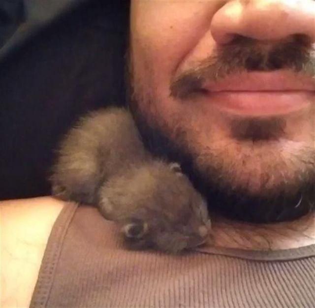 Молодой человек спас крошечного котенка с крыши дома