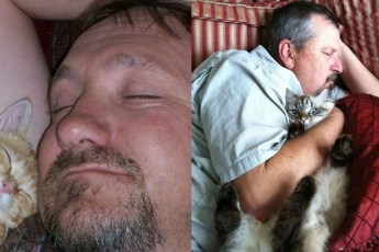 Мужья, которые были против кошки в доме, но....
