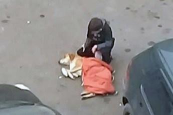 Добрый мальчик поделился своей курткой с замерзающей собакой