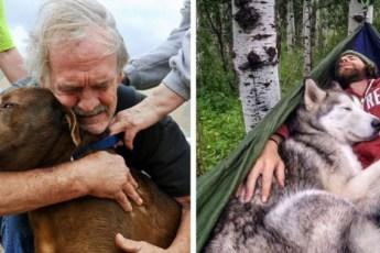 15 фото, после которых вам захочется завести собаку