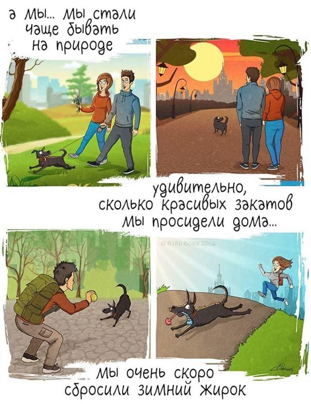 Юмористический комикс, о том что будет с вашей жизнью после появления в ней собаки