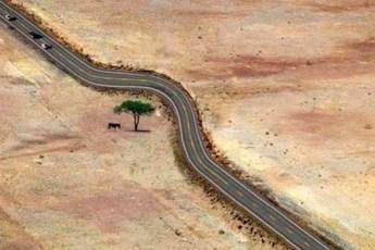 Природу нужно любить и уважать и эти фотографии демонстрируют как это нужно делать