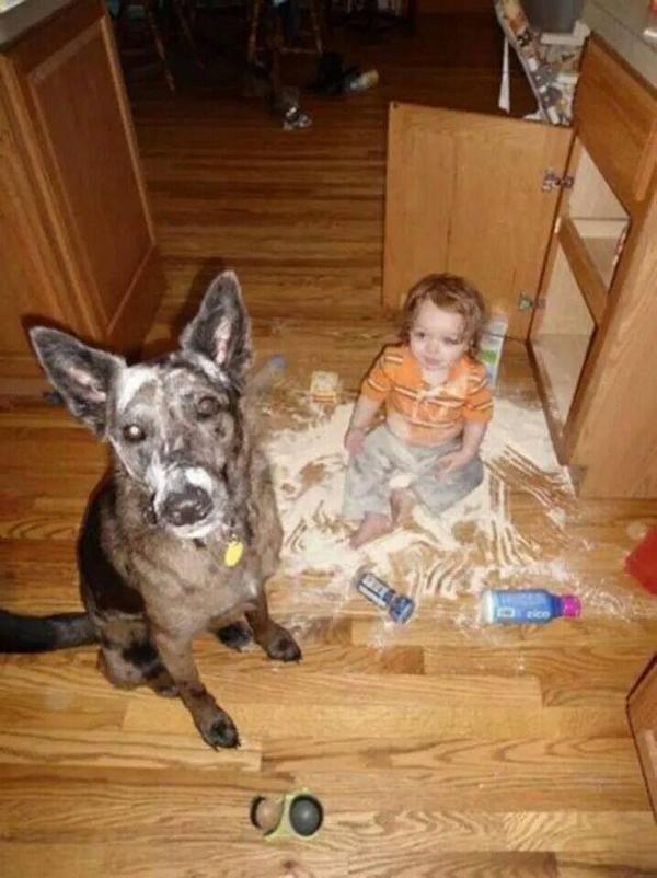 Доказательства, что каждому ребенку нужна собака
