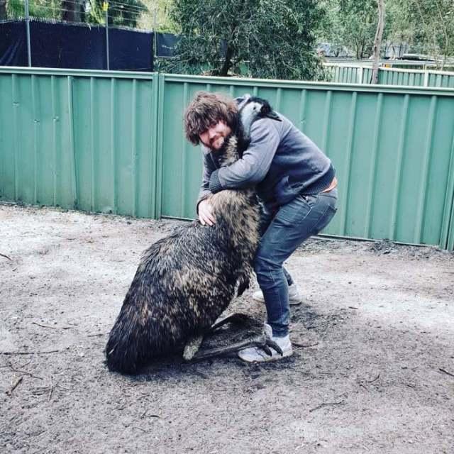 Это любовь! Животные, которые жить не могут без своих хозяев