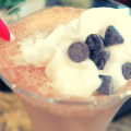 Blended Sugar Free Java Chocolate Chip Low Carb Iced Coffee with Stevia