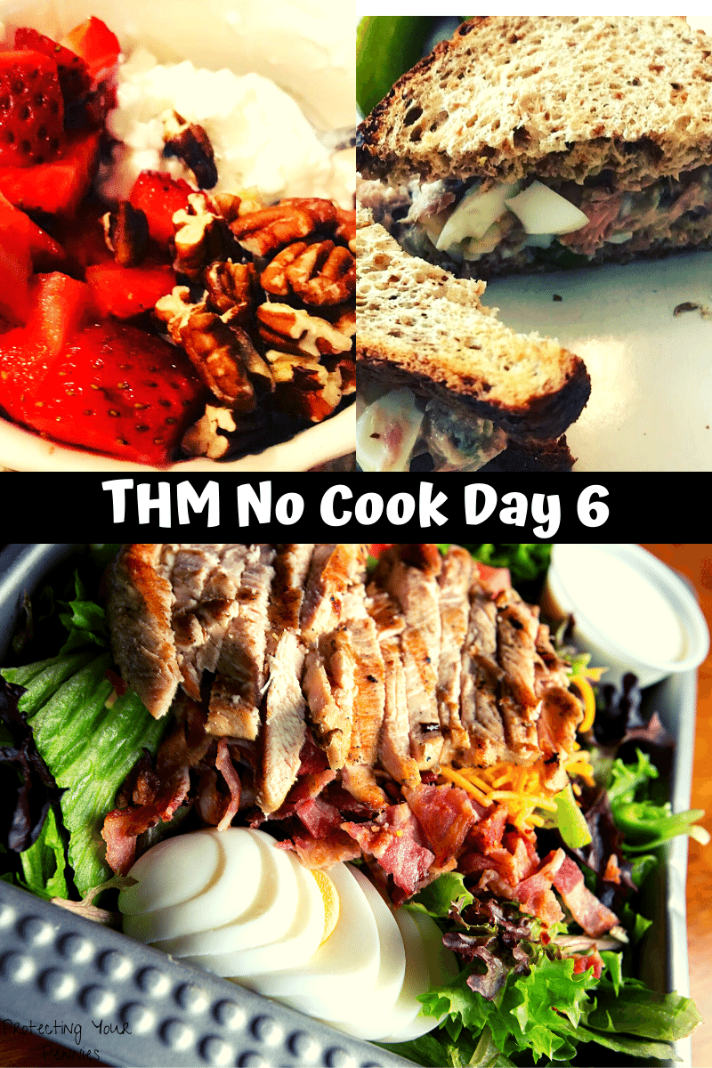 THM Easy Meal Plan Day 6 No Cook