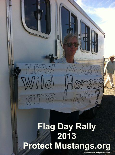 Flag Day Rally
