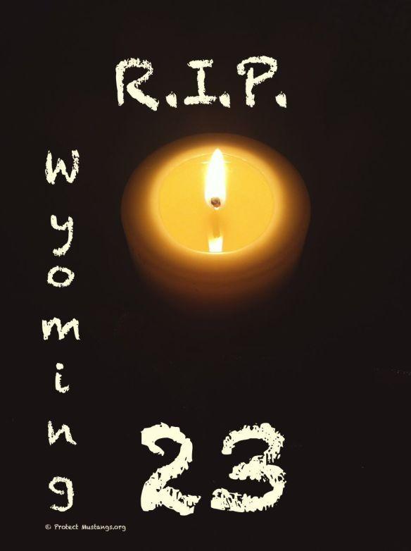 RIP WY23