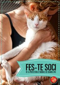 soci1S