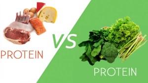 plantes VS viande