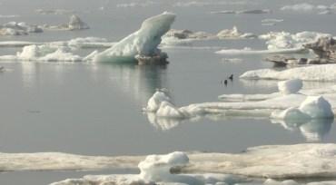 Arctic Change