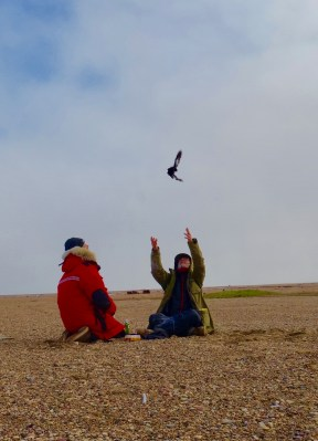 George and Thomas tagging and releasing Black Guillemots. Image Credit: Mike Morrison