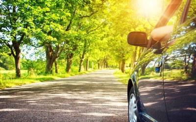 Pollen – Your Car's Springtime Enemy