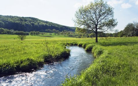 Flusslauf in der Wiese in Bayern, Deutschland (River running through meadow in Bavaria, Germany)