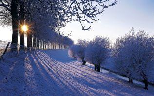 Winter in Nederland (Winter in the Netherlands)