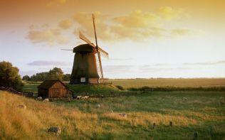 Molen bij Alkmaar (Windmill near Alkmaar)