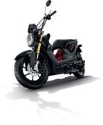 Honda Zoomer X 6