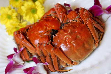 hairy-crab-6-popular-foods-in-mid-autumn-festival