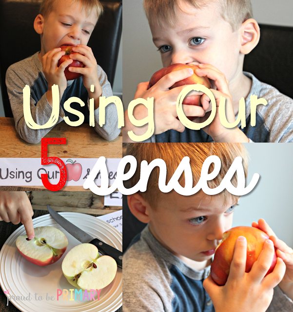 apple activities - 5 senses