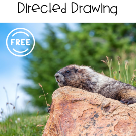 Groundhog Day Directed Drawing Art Activity for Kids