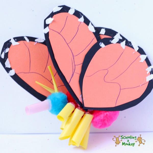 schooling a monkey - butterfly