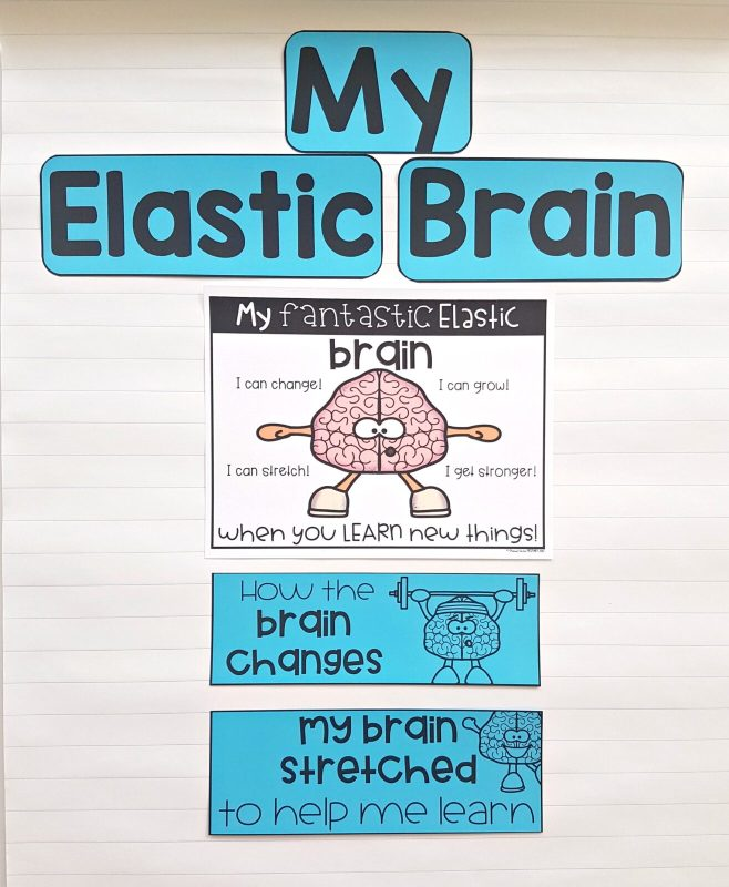 Developing Growth Mindset - My Elastic Brain