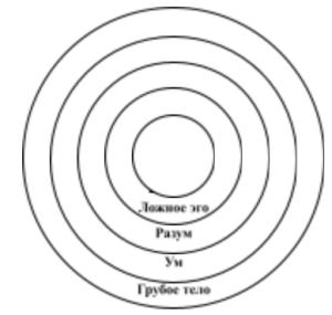 Урок 31.  Составляющие элементы материального тела и причины, приводящие к его формированию