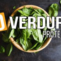 Le 10 verdure più ricche di proteine