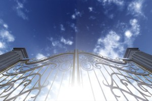 Provence blog - Life at the French School Gates