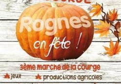 Fete de Courge 05 November Rognes