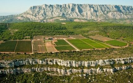 Provence Wine and Vineyard Guide | Provence Guru