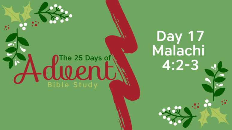25 Days of Advent Bible Study Series {Day 17}