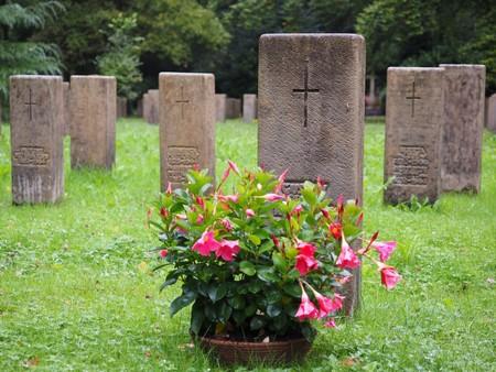 Tombes défunts