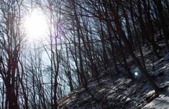 月明洞便り 雪晴3