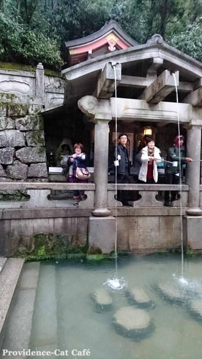 京都観光4