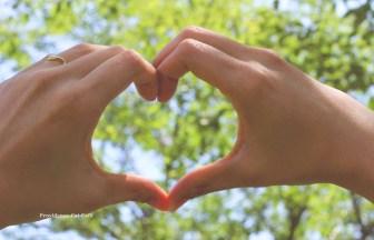 同じ兄弟同士は戦って勝つことで平和がもたらされるわけではない。ただ愛することで平和がもたらされるものだ。争いも戦いも憎しみもない真の愛によってのみ、愛の世界、平和の世界を成すことができる。