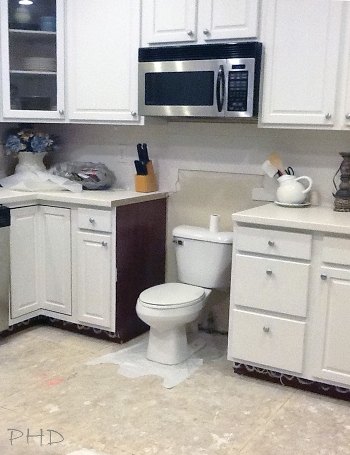 Image result for toilet in kitchen