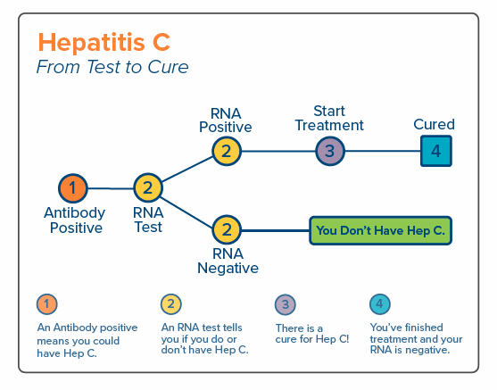 Hep C: From Test to Cure card.