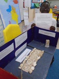 yr-4-roman-projects-march-2018 (9)