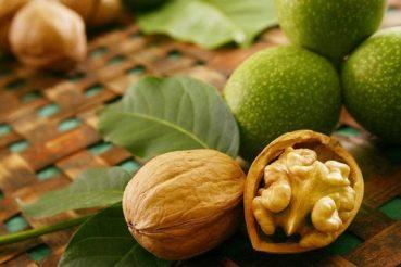Не пропустіть сезон найкорисніших молодих горіхів