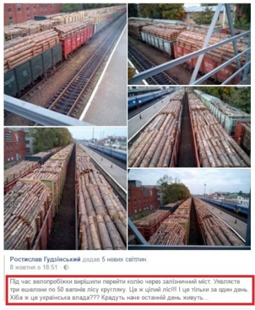 Україна вийшла на перше місце у світі за експортом дров