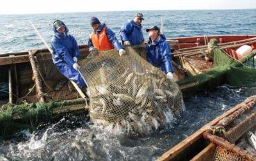 Чи буде Україна з рибою?
