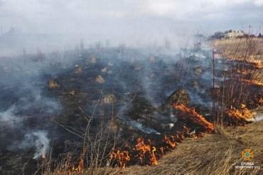 В Тернопільській області не вщухають пожежі в природних екосистемах