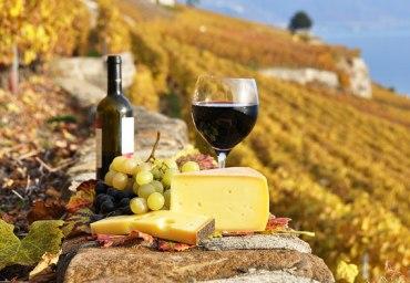 Світове виробництво вина рекордне за останні 15 років