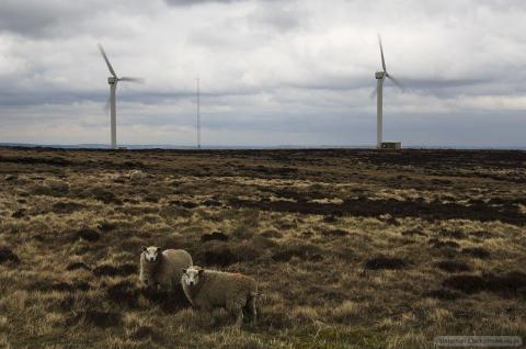 Ovenden windfarm
