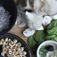 ProWare's Fricasse of Mushrooms